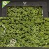 VSyndicate Buds Rolling Tray